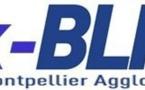 """Les """"Ex-"""" du BLMA : Quelques nouvelles"""